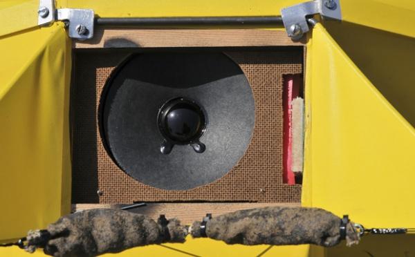 BENEDINI SOUND UNIT (Testé dans RC Pilot N°91)